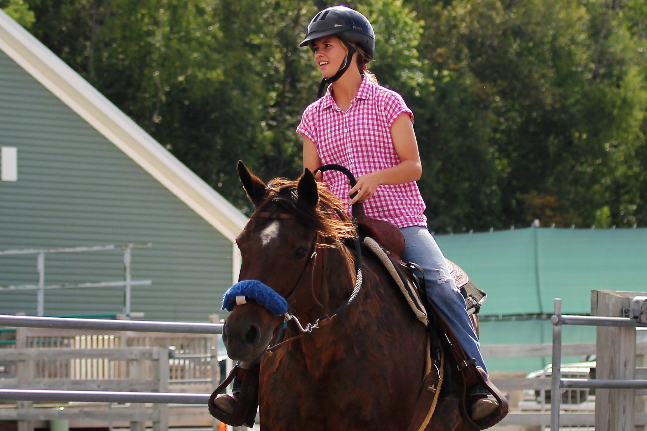 Horse Show Photos