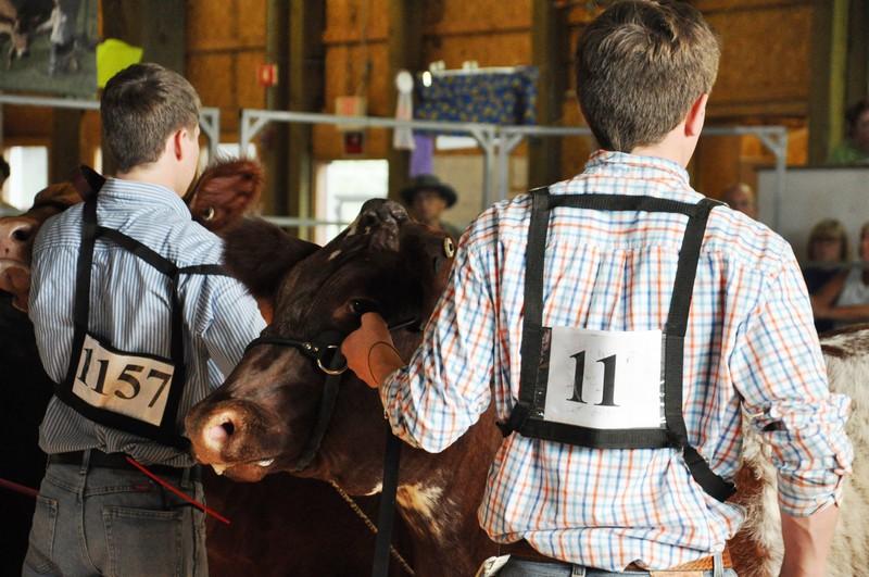steer from behind