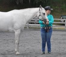 horse 1 tues