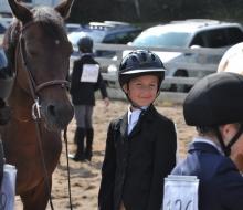 horses mailie 2