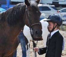 horses mailie 3