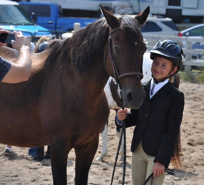horses mailie 5